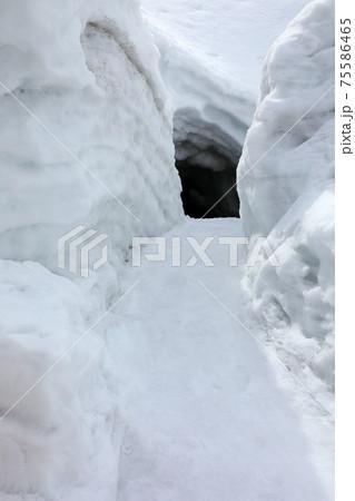 雪を落とす水路の周りは雪の壁 福島県只見町 75586465