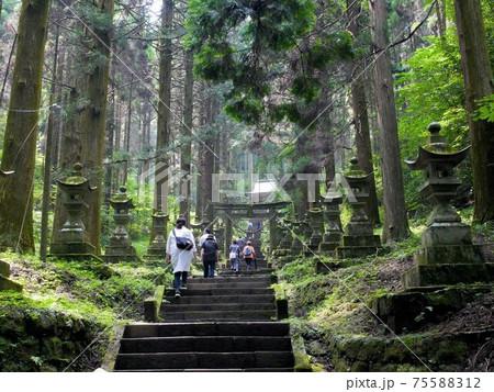 上色見熊野座神社を参拝する人々 (熊本県高森町) 75588312
