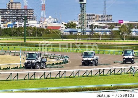 競馬場の風景 ダートコースのハロー掛け 75599103