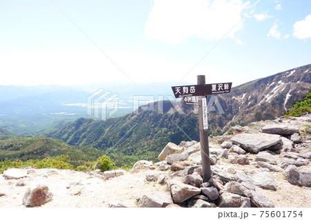 八ヶ岳の天狗岳と根石岳の間にある白砂新道入口の分岐 75601754