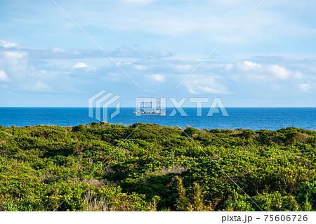 八丈島 島 自然 離島 伊豆諸島 風景 リゾート ワーケーション 観光 旅行 75606726