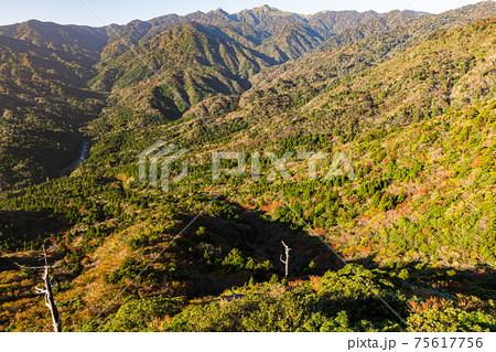 紅葉と朝日に映える雲上の楽園。屋久島太鼓岩からの絶景 75617756