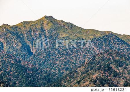 春の朝日に映える日本百名山宮之浦岳。世界自然遺産屋久島  75618224