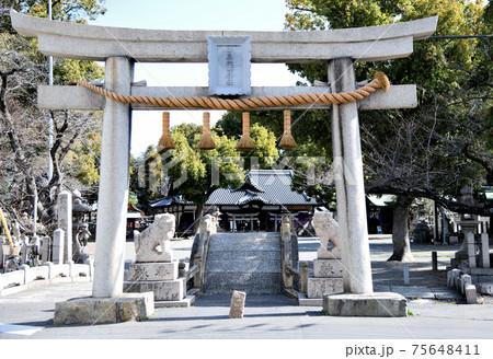 泉穴師神社 鳥居と石畳太鼓橋、その奥に拝殿(大阪府泉大津市) 75648411