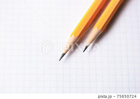 プロジェクトペーパーとHB鉛筆 75650724