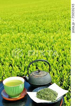 初夏の茶畑と新茶 75659245