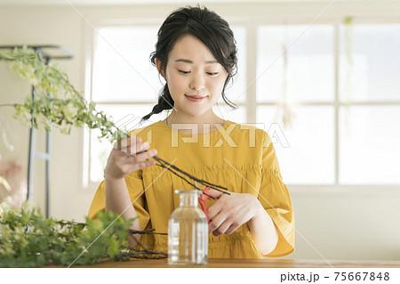 花を生ける若い女性 75667848