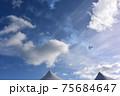 ハワイの空 パールハーバー上空を飛ぶアメリカ海軍の戦闘機 75684647