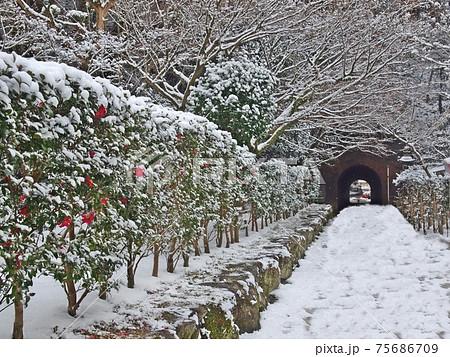 太宰府天満宮裏手の雪に埋もれた竈門神社への抜け道 75686709