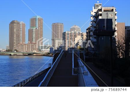 月島の隅田川テラスと高層マンション群 75689744