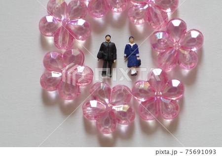 桜の花に囲まれた男子学生と女子学生 75691093