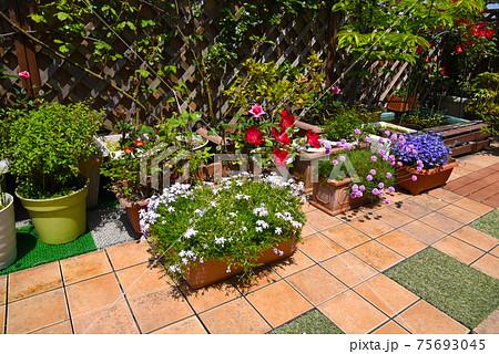 ルーフバルコニーにタイルとラティス ガーデニングでお花のある生活 75693045