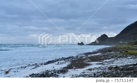龍飛岬近くで見た大荒れの日本海の情景@青森 75711147