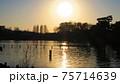 洗足池から見た夕刻 75714639