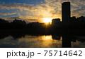 一瞬にして終わる綺麗な夕暮れ時の不忍池 75714642