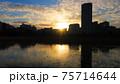 上野で時間を忘れる夕暮れ時の不忍池 75714644