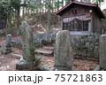奈良井宿、中山道の杉並木にある二百地蔵。地蔵堂の前に千手観音など二百体近い地蔵が並ぶ 75721863