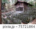 奈良井宿、中山道の杉並木にある二百地蔵。地蔵堂の前に千手観音など二百体近い地蔵が並ぶ 75721864