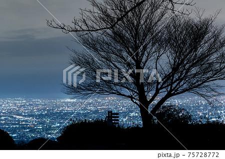 大阪 夜景 ぼくらの広場 75728772