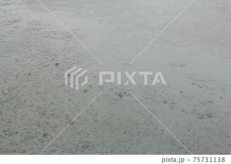 道路の水溜りに雨の波紋が広がる風景 75731138