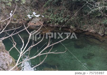 広島県山県郡安芸太田町柴木にある三段峡(特別名勝)遊歩道から見た渓谷の風景 75735997