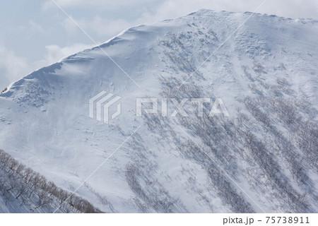 冬の日高山脈 雪庇の発達した野塚岳西峰 75738911