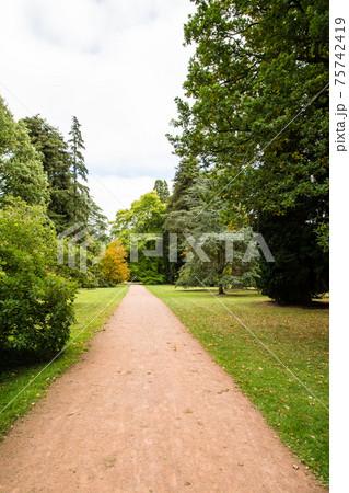 様々な色に変わった秋の木々と細長く続き散歩道 75742419