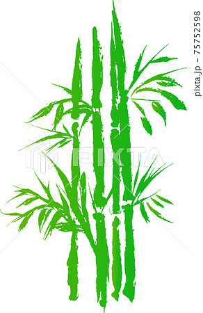 濃い水彩・墨で描いた竹 75752598