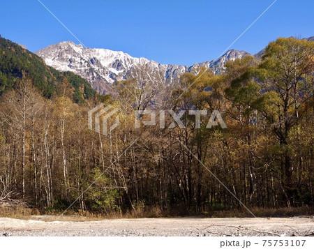 秋の上高地 梓川から新雪の穂高連峰 75753107