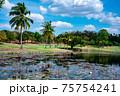タイのゴルフコース シニア 人気 満喫 健康管理 75754241