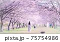 美しい桜並木と女性 後ろ姿 春爛漫 75754986