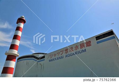 ノシャップ寒流水族館・稚内灯台(北海道稚内市) 75762366