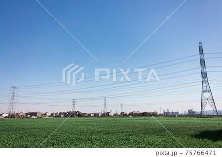 青い空の下の牧歌的な風景と送電鉄塔 75766471