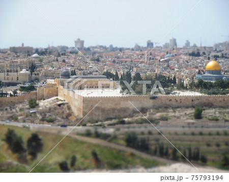エルサレム 神殿の丘 ジオラマ風 75793194