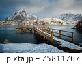 The magic of nature in Lofoten during winter 75811767