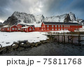 The magic of nature in Lofoten during winter 75811768