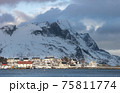 The magic of nature in Lofoten during winter 75811774