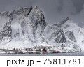 The magic of nature in Lofoten during winter 75811781