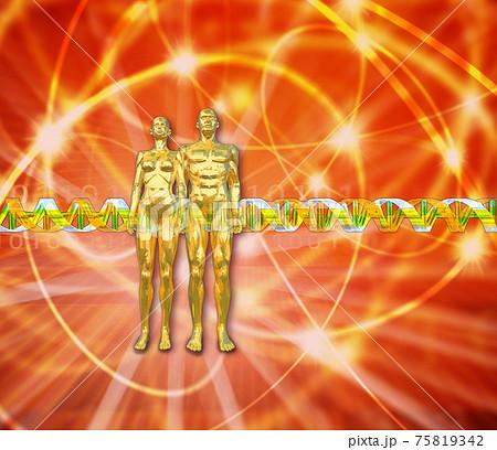 DNA遺伝子配列のイメージ 75819342