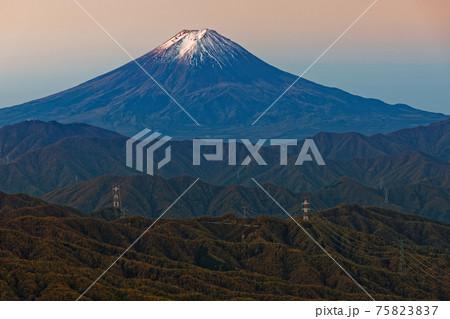 大菩薩嶺稜線から見る朝焼けの富士山 75823837