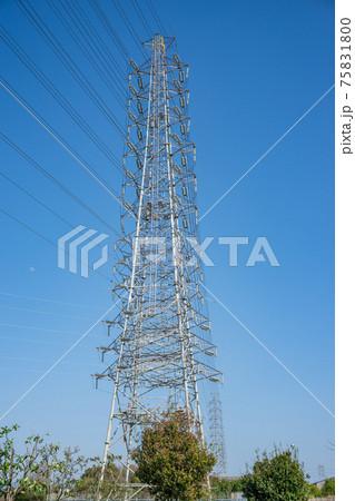 快晴の青空にそびえ立つ高圧送電鉄塔 75831800