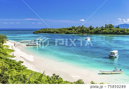 石垣島・川平湾の美しいサンゴ礁の海 75850289