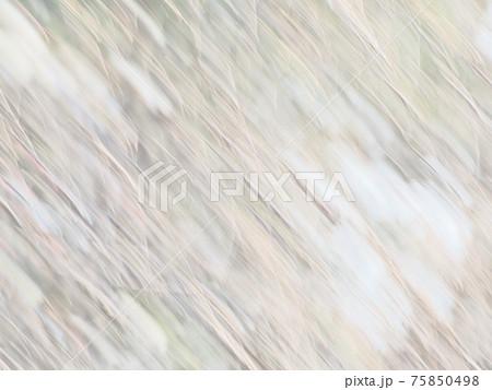 白梅の花を流して撮った羽毛よようなテクスチャ 75850498