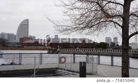 横浜港、大桟橋から見た赤レンガ倉庫 75855040