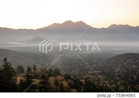 秋の上士幌町三国峠 紅葉とニペソツ山のモルゲンロート 75864065