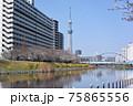 平井旧中川の風景 75865556
