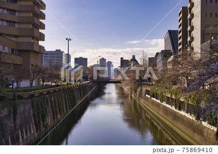 中目黒一丁目田楽橋から川下側の風景 75869410