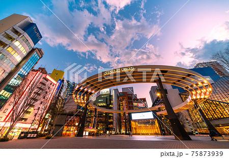 日本の東京都市景観 池袋西口公園などを望む=2021年2月2日 75873939