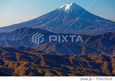 大菩薩稜線から見る富士山と紅葉の山並み 75915910