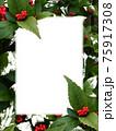 白色コピースペースのある赤い実のセンリョウ 75917308